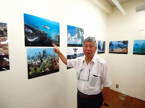 辺野古の海写真展、新藤健一さん