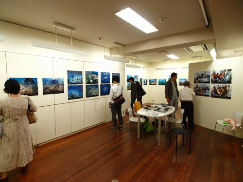 辺野古の海写真展