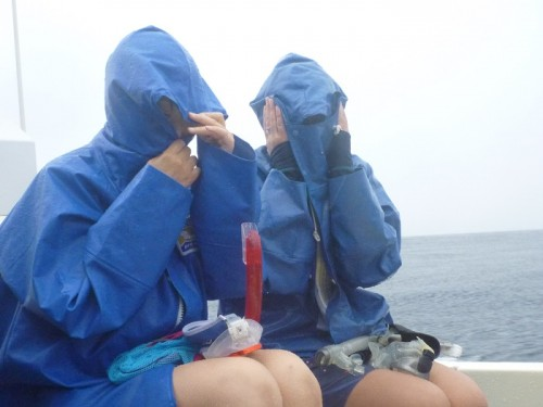 御蔵島、船上で寒がるゲストさん(撮影:寺山英樹)