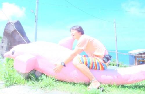 御蔵島のピンクのイルカとむらいさちさん