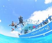前の記事: うみカメラマンおすすめ!宮古島で水中写真を撮るならこのショッ