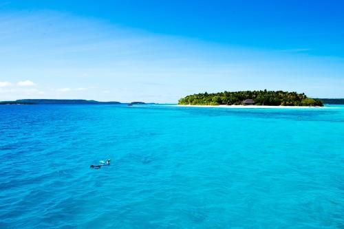 トンガの島と青い海(撮影:岡田裕介)