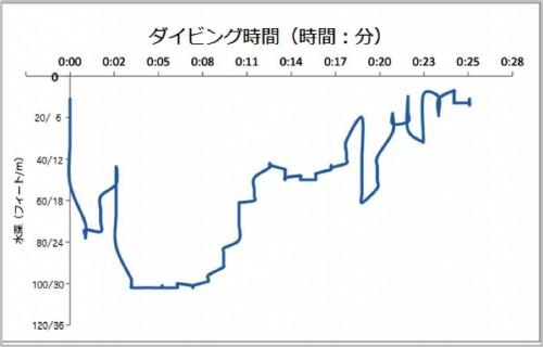 潜水プロファイル(提供:DAN JAPAN)
