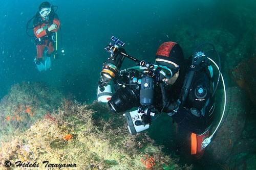 安良里で水中撮影中の越智隆治(撮影:寺山英樹)