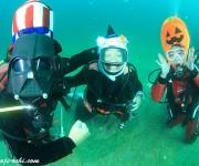 前の記事: 海の中からハッピーハロウィン!