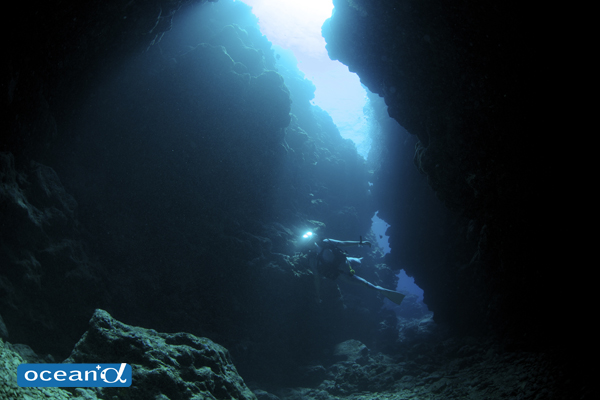 石垣島のサブマリンの洞窟(撮影:中村卓哉)