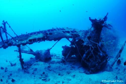 パプアニューギニア・リセナン、沈んだ飛行機(撮影:稲生薫子)