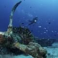 パプアニューギニア・リセナン、沈んだ飛行機(撮影:中村卓哉)