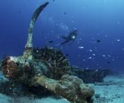 前の記事: 美しすぎる飛行機の残骸が沈む、PNG・ケビエンの海