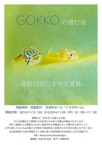 GOKKOの棲む海~函館臼尻の水中写真展~(佐藤長明)