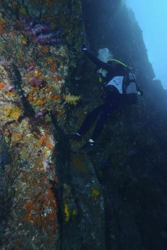 伊豆大島での海中ボルダリング