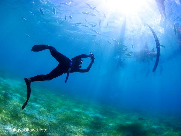 無重力の世界では自由自在!? アングル(視線)を変えるだけで劇的に変わる水中写真