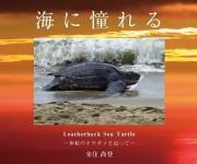 次の記事: 世界最大のカメ、オサガメを追った写真集「海に憧れるLeath