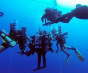 次の記事: エジプト人ダイバーが、ダイビング潜水深度332.35mのギネ