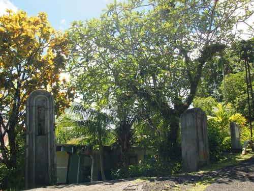 パラオ熱帯生物研究所(提供:座安佑奈)