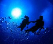 前の記事: 【ダイバーアンケート】ダイビングを通じて出会った異性と付き合