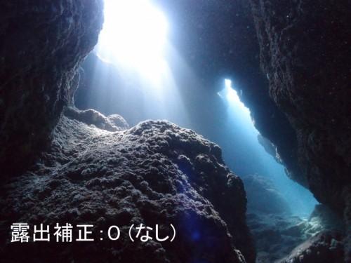 水中写真講座用写真(提供:大川拓哉)