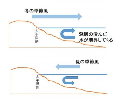季節風による海水の流れ(提供:大間哲)