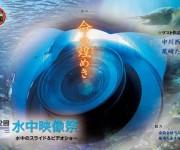 次の記事: 第32回水中映像祭「命の煌めき」が2015年4月11日に開催