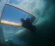 次の記事: 世界遺産・知床で氷点下を潜る!「第3回フリーダイビング流氷カ