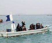 前の記事: 葉山でボートダイビングがスタート!~新ポイントに潜ってきまし
