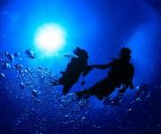 次の記事: 震災から4年。東北の海で感じた3つのこと ~水中から見た復興
