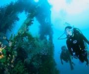 次の記事: 減圧症を防ぐために気にすべきは、平均水深×潜水時間!!