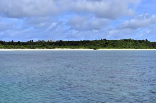 宮古島のウミウシ(撮影:中村卓哉)