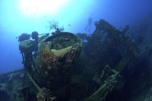 宮古島の沈船(撮影:中村卓哉)