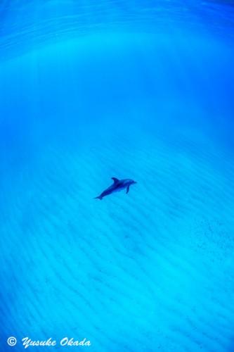 やっぱり白い砂浜にブルーの海は気持ちがいい