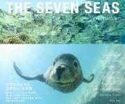 前の記事: 水中写真家・古見きゅうさんのベストセレクション写真集「The