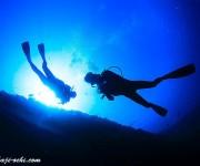 前の記事: 冷静なダイビング事故対応と分析から得る重要な教訓 ~水中で右