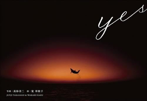 高砂淳二写真集yes表紙(撮影:高砂淳二)