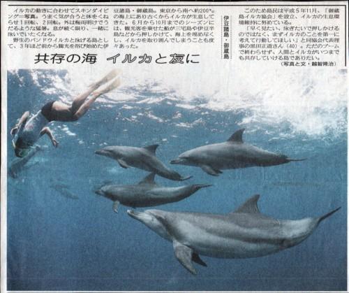 御蔵島の記事(撮影:越智隆治)