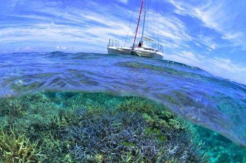 宮古島、八重干瀬の珊瑚礁の半水面(撮影:中村卓哉)