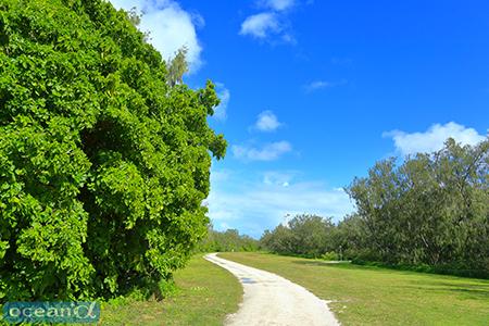 リゾート施設から、滑走路を抜けて、西側のビーチへと続く道
