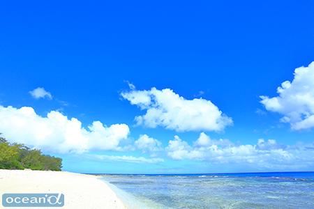 西側のビーチ。今回は全ダイブこちら側で潜った