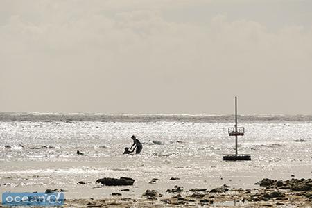 スノーケルもこの島での人気のアトラクション。マンタやクジラが見れることも