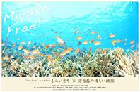 """MIYAKO Free! """"ゆるフォト""""カメラマン・むらいさち×宮古島の優しい横顔"""
