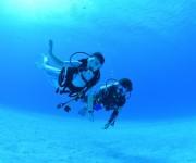 次の記事: 初めて潜るポイントは必ずガイドダイビング 〜バディダイビング