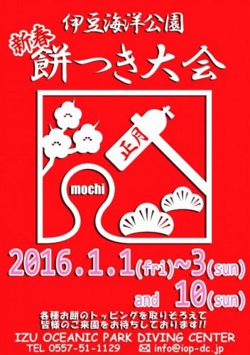 mochisyougatsu2016-437x620