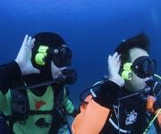 前の記事: ガチンコ検証! 水中会話装置・ロゴシーズは、本当にちゃんと話