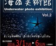 前の記事: 2016年3月1日より海の美術館、開催! ~美しさと海の輝き