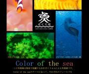 前の記事: 2016年2月19~21日「海のシェルパ展」開催 ~Colo
