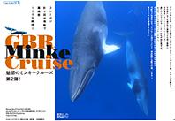 魅惑のミンキークルーズ 第2弾 ミンククジラ遭遇率100%維持のグレートバリアリーフ