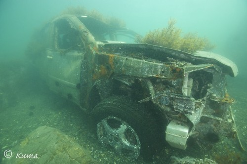 震災後に海中に沈む自動車