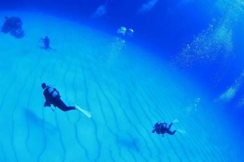 砂地とダイバー