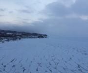 前の記事: アジアチャンピオン・篠宮龍三が極寒氷点下の海に挑む ~究極の