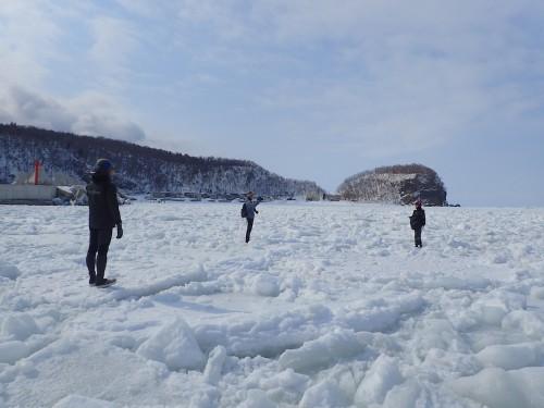 これはウトロの湾内、一面の氷に覆われています。通常はここが船が行き来する港内とは不思議です