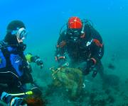 前の記事: ダイビングにハマる漁師たち ~三陸ボランティアダイバーズと漁
